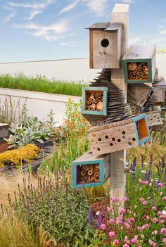 Attracting Wildlife & Birds to Backyard Garden, blue sky and clouds, lots of flowering plants, insect houses, nesting materials, birdhouse, bug shelters, nectar sources plantings, feeders, habitat for wildlife.