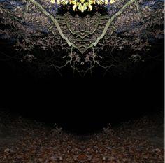DOROTHEE MURAIL «Paysages fermés«