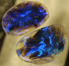 Lightning Ridge Black Opal, almost a matched pair, one a little larger (2.7 x 1.8 x 5cm) than the other. (2.4 x 1.6 x.6cm) flashing iridescent blue. Rochas, Marble, Los 30, Nail Ideas, Tie Dye Skirt, Opal, Minerals, Planets, Gemstones