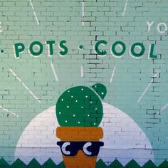 🌵😎 Pots•Cool Yo (artist unknown) #popyacolour #walls_talking #pocket_colors #pocket_collage #tv_colors #tv_rainbow #tv_monotones #tv_typography #jj_colorlove #jj_cheers_walls #jj_texttypographical #unitedcolors_in #infinity_colors #asi_es_greenworld #myworld_in_green #total_mygreen #rustlord_colour #rustlord_texturaunique_ #ihaveathingforwalls #wallsandfacades_greatshots #lv_colours #filthyfacades #9vaga_dailytheme9 #nothingisordinary #minimal_take #greenfriday #tvc_flower_greygreen…