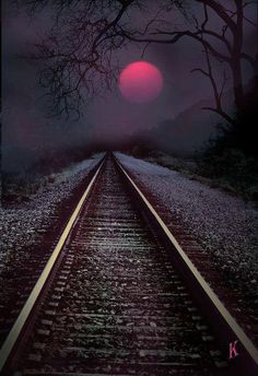 Lonely tracks under a red moon.