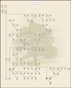 thank you for downloading family tree builder myheritage family