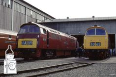 BR Class 52 Westerns to Colour photographs St Blazey, Leeds City, South Devon, British Rail, Train Engines, Diesel Locomotive, Stoke On Trent, Plymouth, Locs