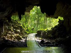 Lang cave in the Mulu National Park