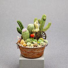♥miniature southwestern cactus tub