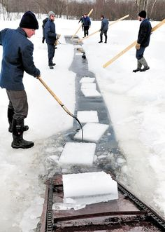 Three American Maine towns have small Amish communities: Smyrna, Easton (Fort Fairfield) and Unity. Here they are cutting ice for refrigeration use in the Palmer Hill Farm Dairy in Thorndike, Maine. Amish Family, Amish Farm, Amish Country, Amish Men, Northern Maine, Amish Culture, Frozen Pond, Amish Community, Ontario