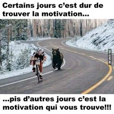 All We need to succeed in our life is Motivation. So, We are back with a massive collection of Inspirational Memes. There is 91 Motivational memes on this list Stupid Funny, Funny Cute, The Funny, Funny Jokes, Funniest Memes, Funny Pics, Funny Humour, Funny Sayings, Funny Cartoons