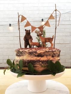 Woodland themed cake inspired by another Pinterest post, made with chocolate mud cake, buttermilk frosting, rosemary for the trees and Schleich animal figurines