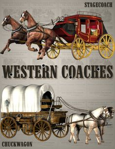 Western Coaches