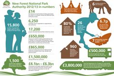 Information Graphic designed for the New Forest National Park Authority