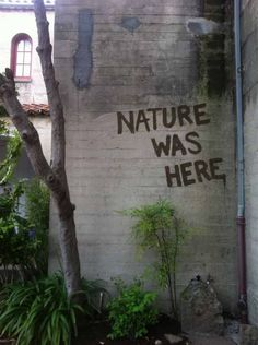 Nature was here; street art