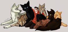 Teen Wolf - Derek Hale x Stiles Stilinski + Pack