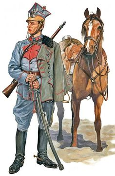 Polish Legion Biblioteka Barwy i Broni - Google Search