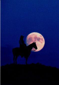 Leanin Tree Midnight Cowboy Birthday Greeting Card BDT16314 | Buffalo Trader Online