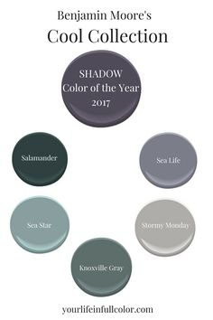 Benjamin Moore's Shadow 2117-30 is the perfect companion for these cool colors. Salamander 2050-10, Sea Star 2123-30, Sea Life 2118-40, Stormy Monday 2112-50, Knoxville Gray HC-160.