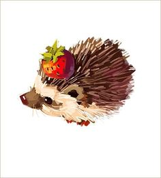 Image result for photographs and paintings of hedgehogs
