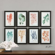 Add a bright hint of color and shore life to your home!