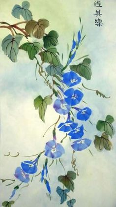 Jane Dwight. Morning glory