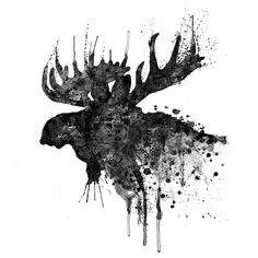 Black And White Moose Head Watercolor Silhouette by Marian Voicu Black And White Moose Head Watercolor Silhouette by Marian Voicu <br> Black And White Moose Head Watercolor Silhouette Painting by Marian Voicu Moose Silhouette, Silhouette Painting, Silhouette Design, Moose Head, Moose Art, Moose Antlers, Framed Art Prints, Canvas Prints, Framed Wall