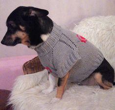 Вязание свитера для собаки спицами по схеме с описанием (МК)