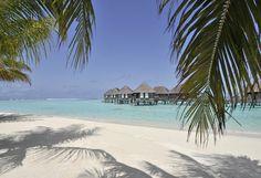 Club Med Kani - Petit paradis de l'archipel des Maldives, entièrement réservé aux hôtes du Village, elle égrène ses 75 Suites sur Pilotis*, qui, vues du ciel, prennent la forme d'un palmier géant poussé à fleur de lagon.
