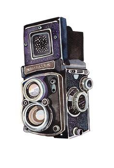 Vintage Camera by Holly Exley Illustration