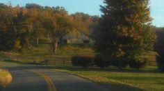 Union County Scenes