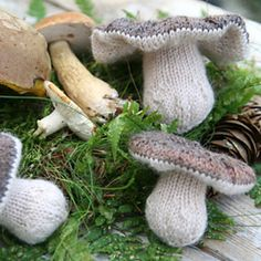 Knit Mushrooms