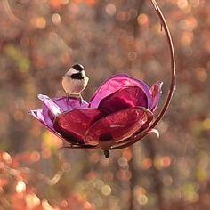 Liven up your garden with artist designed bird feeders, solar lights, garden torches & more! Art sparked by nature! Backyard Birds, Outdoor Art, Dream Garden, Yard Art, Belle Photo, Beautiful Birds, Bird Houses, Bird Feeders, Garden Design