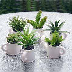 Plant in coffee cups instead of watering cans and place on tables, indoor and out?
