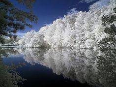 Barrett Lake, Placerville, California, USA (infrared photo)