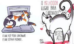 Livro ilustrado mostra como é a vida a partir da perspectiva dos gatos