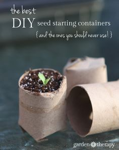 The best seed starting containers you can make at home (and the worst)