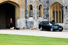 The Queen's Welsh Corgis dogs getting ready for a ride at Windsor Castle
