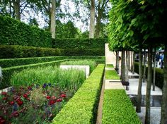 gardendesigner01:  Chelsea Flower Show 2009 - A sublime garden by Luciano…