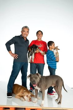 Cesar, his sons & Daddy and Junior Cesar Millan, Pet Dogs, Dog Cat, Doggies, Milan, Dog Whisperer, Daddy, Aggressive Dog, Chihuahua Love