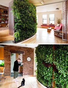 Garden Envy: wall garden #indoorherbgarden #hydroponicgarden #nanogarden #kitchenherbgarden #growwall #djscabinetry