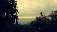 """Un borgo """"delizioso"""": Giardino degli aranci a #Sermoneta #Latina #Lazio #colazionenelmondo #dolcipattìni"""