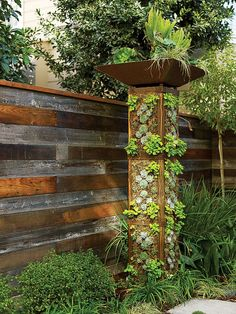 Tour the vertical gardens of the San Francisco Idea House with the landscape architect