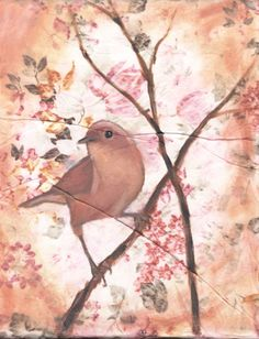 Vintage Bird Paintings