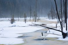 Early Thaw Photo by Roberta Janik -- National Geographic Your Shot