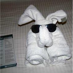 animales-con-toallas-05