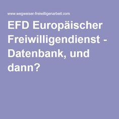 EFD Europäischer Freiwilligendienst - Datenbank, und dann?