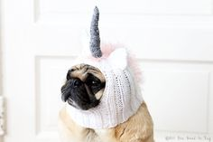 Give your pet an air of myth, magic, and majesty with a Unicorn Hat from All You Need is Pug.  Each hat is hand-knit with love and adorned