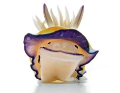 """""""Aww Cute Sea Slug"""" 5 April Monday I know you guys are wondering , """"Why am I talking about Sea Slugs ? My mom bought sea slugs from . Underwater Creatures, Underwater Life, Ocean Creatures, Vida Animal, Especie Animal, Beautiful Creatures, Animals Beautiful, Animals And Pets, Cute Animals"""
