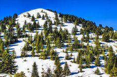Το Χιονοδρομικό Κέντρο Μαίναλο