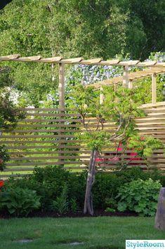 Pergola In Front Yard Product Garden Trellis, Garden Fencing, Lawn And Garden, Jacuzzi, Back Gardens, Outdoor Gardens, Walled Garden, Garden Landscape Design, Shade Garden