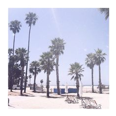 Santa Monica. It was a great place to live for a year. Look at that light…ahhhhhhh