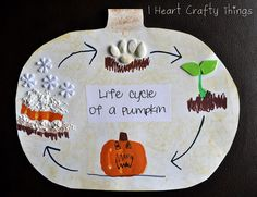 "I HEART CRAFTY THINGS: Life Cycle of a Pumpkin to go along with book ""Pumpkin Jack""."