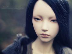 Fall I | Flickr - Photo Sharing!